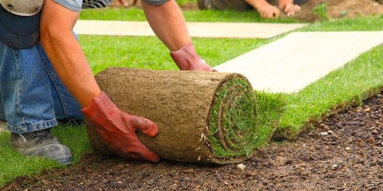 Jardineria landscaping trabajo facil de conseguir