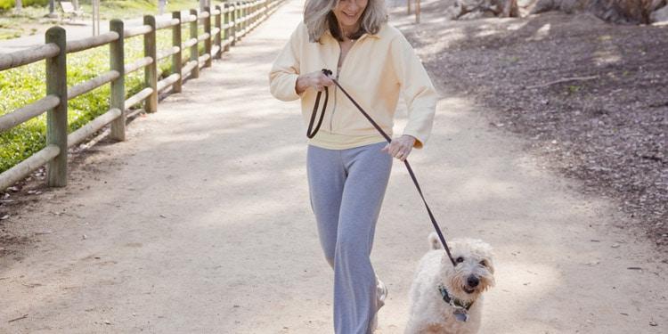 trabajos faciles para mayores cuidador de mascotas paseador de perros